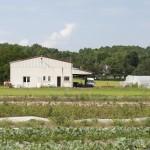 agriculture francilienne- Crédit  Marc Segur
