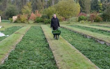 Soutenez l'achat d'une nouvelle ferme en Île-de-France