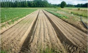 La plaine de Milly : un territoire exemplaire