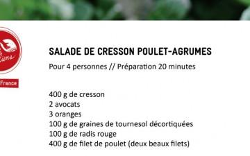 Salade de cresson poulet-agrumes