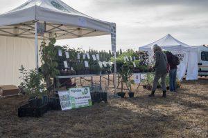 Une pépinière de plantes bio pour préparer l'avenir...